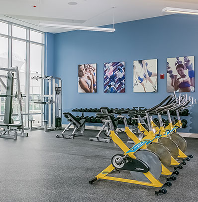 apartments with gym in stamford at beacon harbor point blt