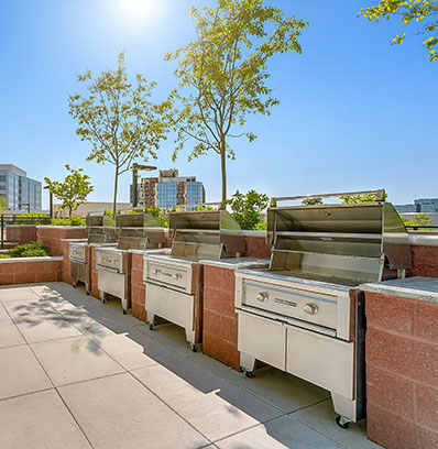 grilling station resident amenities apartments in stamford nv harbor point